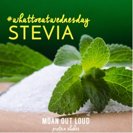 Life is Much Sweeter With Stevia