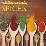 All About Spice